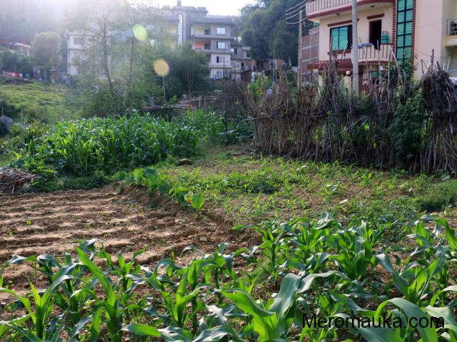 land for sale in Nagarjun, sitapaila Kathmandu - Mero Mauka
